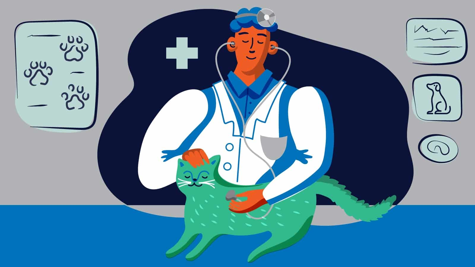 Illustration: Vet student with cat